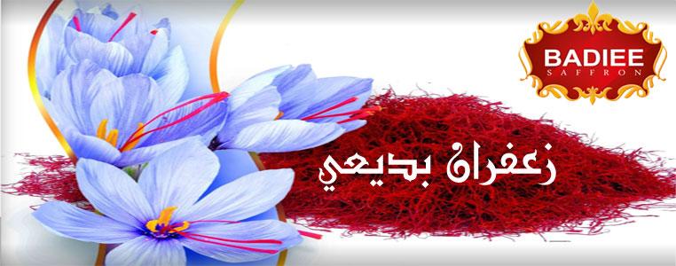 Saffron Badiee Banner