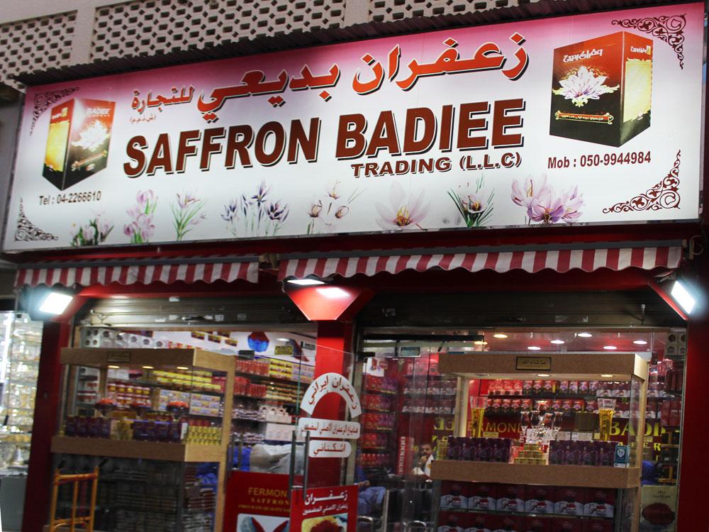 Saffron Badiee - 2.jpg